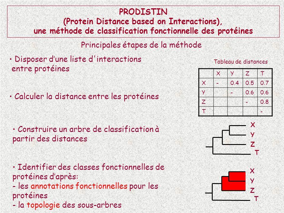 X Y Z T PRODISTIN (Protein Distance based on Interactions), une méthode de classification fonctionnelle des protéines Disposer dune liste d'interactio