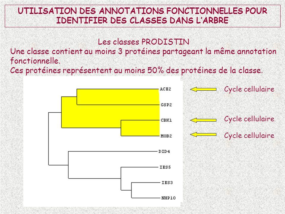 UTILISATION DES ANNOTATIONS FONCTIONNELLES POUR IDENTIFIER DES CLASSES DANS LARBRE Les classes PRODISTIN Une classe contient au moins 3 protéines part