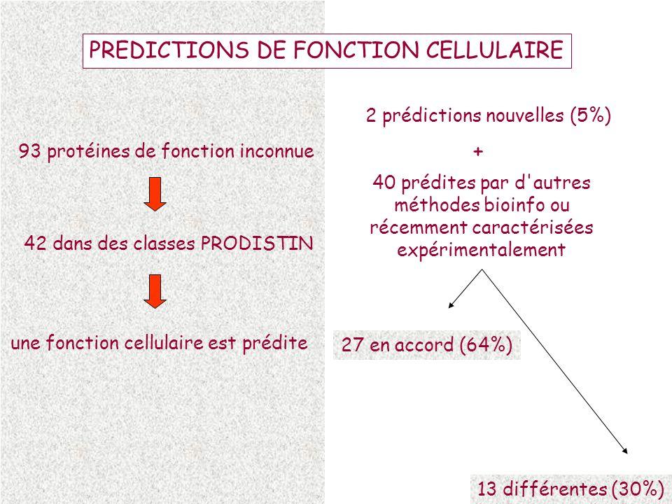 PREDICTIONS DE FONCTION CELLULAIRE 93 protéines de fonction inconnue 42 dans des classes PRODISTIN une fonction cellulaire est prédite 2 prédictions n