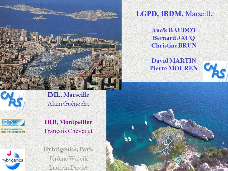 Anaïs BAUDOT Bernard JACQ Christine BRUN David MARTIN Pierre MOUREN LGPD, IBDM, Marseille IML, Marseille Alain Guénoche IRD, Montpellier François Chev