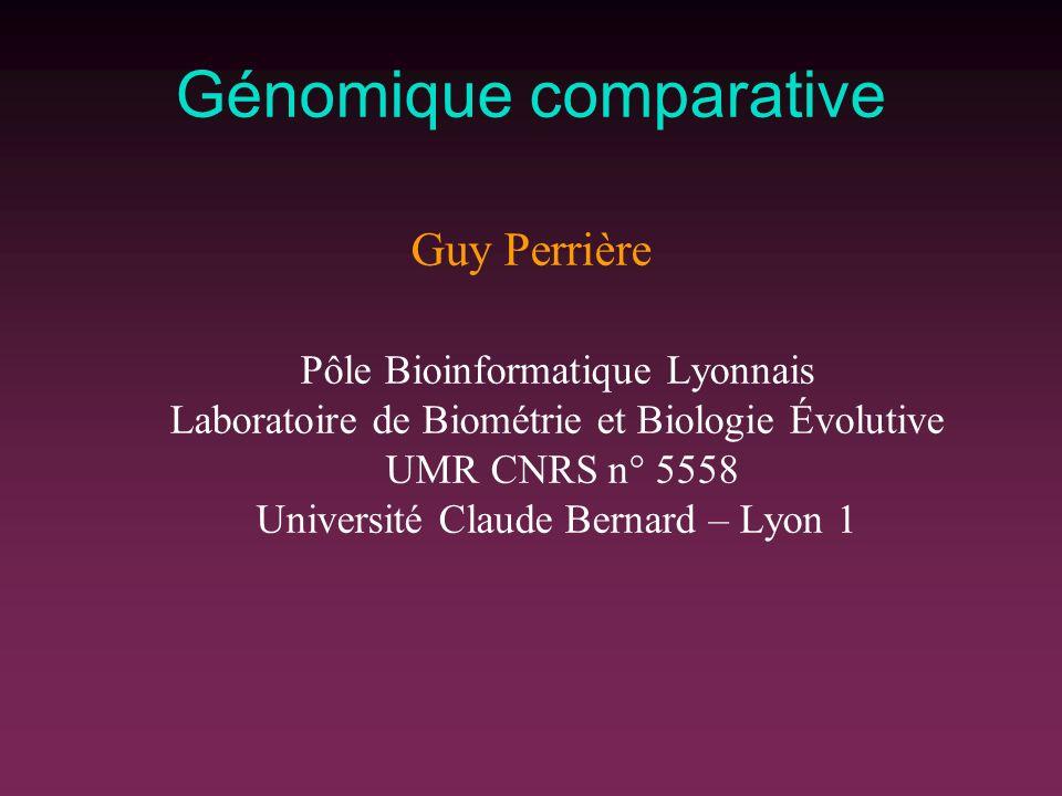 Génomique comparative Guy Perrière Pôle Bioinformatique Lyonnais Laboratoire de Biométrie et Biologie Évolutive UMR CNRS n° 5558 Université Claude Bernard – Lyon 1