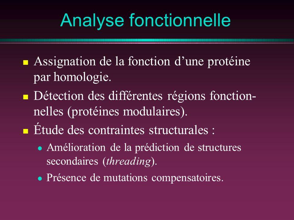 Analyse fonctionnelle Assignation de la fonction dune protéine par homologie. Détection des différentes régions fonction- nelles (protéines modulaires