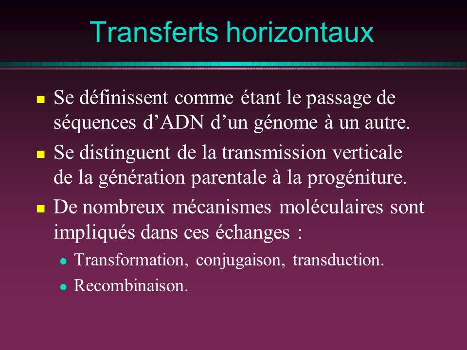Transferts horizontaux Se définissent comme étant le passage de séquences dADN dun génome à un autre. Se distinguent de la transmission verticale de l