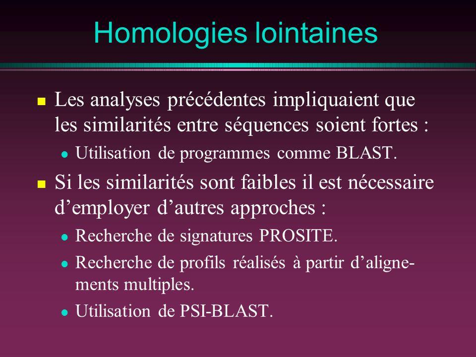 Homologies lointaines Les analyses précédentes impliquaient que les similarités entre séquences soient fortes : Utilisation de programmes comme BLAST.