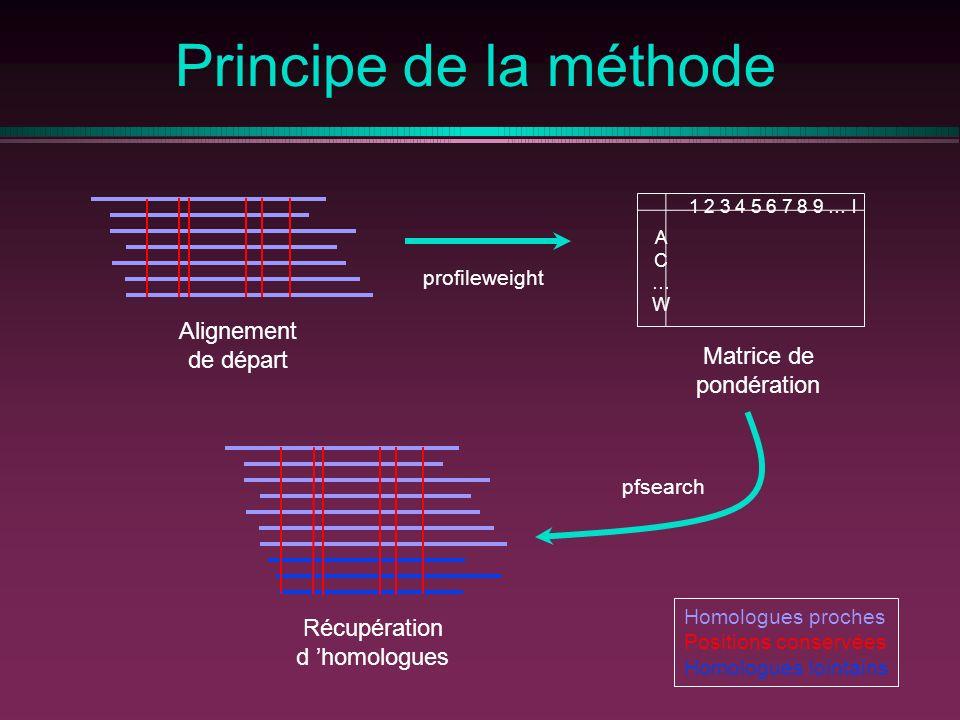 Principe de la méthode Alignement de départ profileweight Matrice de pondération 1 2 3 4 5 6 7 8 9 … l AC…WAC…W Récupération d homologues pfsearch Homologues proches Positions conservées Homologues lointains