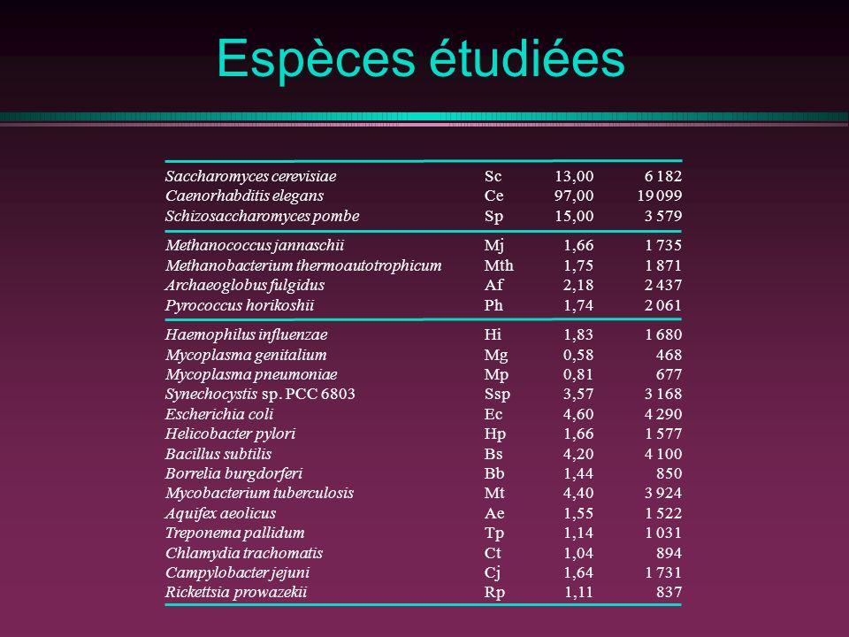 Espèces étudiées Saccharomyces cerevisiae Caenorhabditis elegans Schizosaccharomyces pombe Methanococcus jannaschii Methanobacterium thermoautotrophic