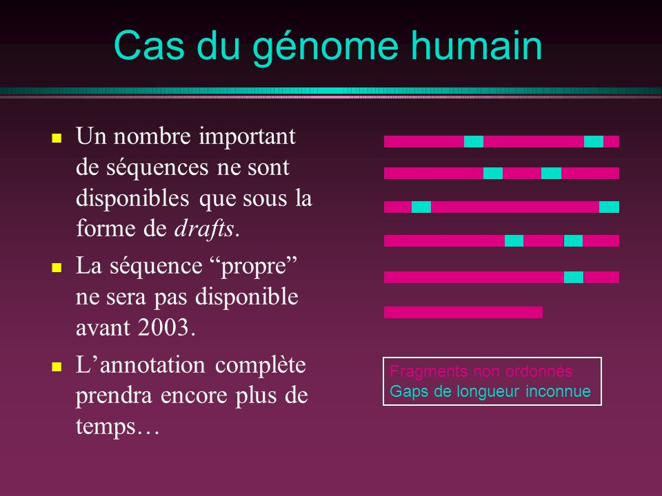 Cas du génome humain Un nombre important de séquences ne sont disponibles que sous la forme de drafts. La séquence propre ne sera pas disponible avant