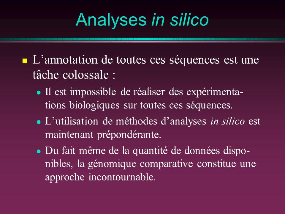 Analyses in silico Lannotation de toutes ces séquences est une tâche colossale : Il est impossible de réaliser des expérimenta- tions biologiques sur toutes ces séquences.