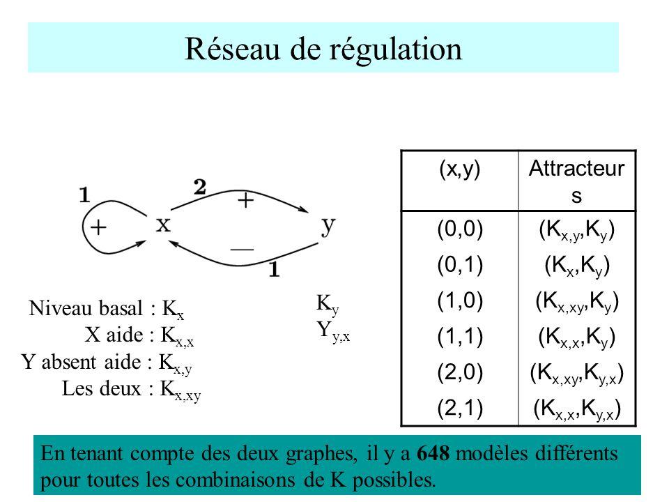 Réseau de régulation (x,y)Attracteur s (0,0)(K x,y,K y ) (0,1)(K x,K y ) (1,0)(K x,xy,K y ) (1,1)(K x,x,K y ) (2,0)(K x,xy,K y,x ) (2,1)(K x,x,K y,x )