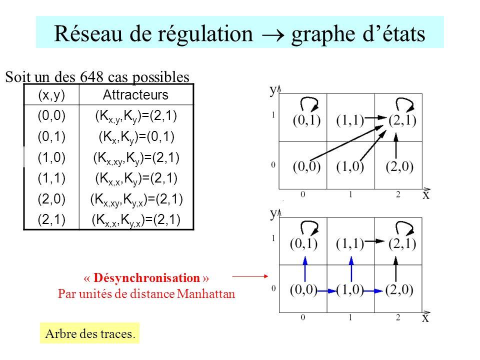 Réseau de régulation graphe détats (x,y)Attracteurs (0,0)(K x,y,K y )=(2,1) (0,1)(K x,K y )=(0,1) (1,0)(K x,xy,K y )=(2,1) (1,1)(K x,x,K y )=(2,1) (2,