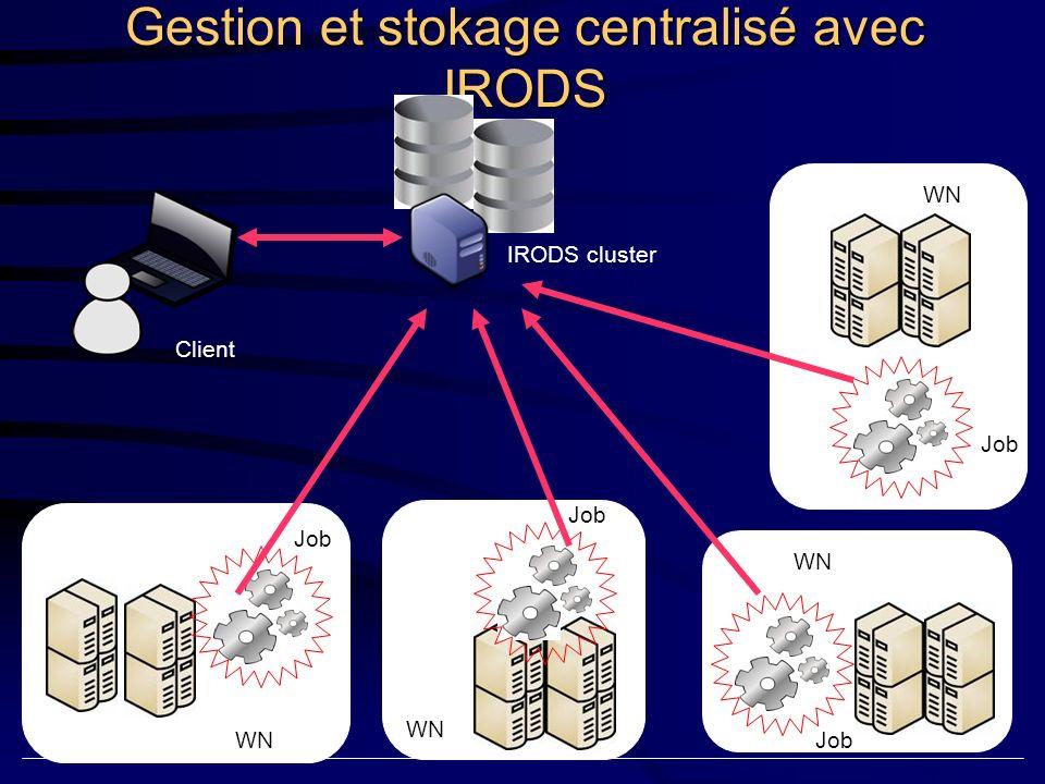 8 millions de séquences à blaster: Stratégie Programme BLAST 2.2.17 options standards Banque BLAST 8 millions de séquences Divisée en 4 bases de 2 millions de séquences pour éviter de dépasser la mémoire maximum disponible sur les machines Séquences à blaster 8 millions de séquences,soit: 250, 000 fichiers de 30 séquences au format FASTA 30 séquences : nb maximum de séquences pour éviter un dépassement de mémoire