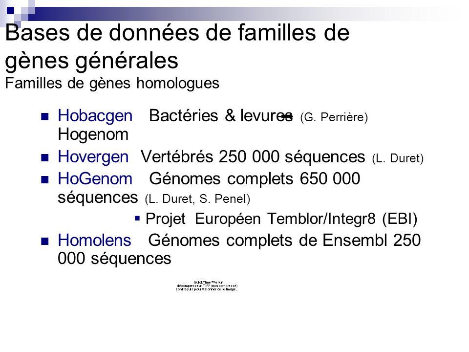 Bases de données de familles de gènes générales Familles de gènes homologues Hobacgen Bactéries & levures (G.