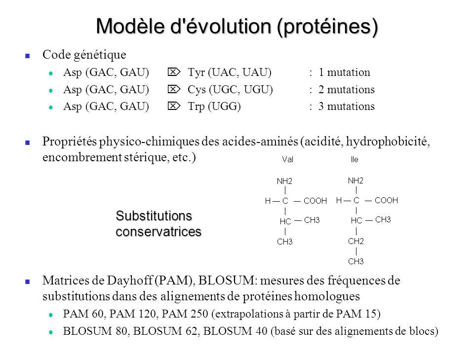 Modèle d'évolution (protéines) Code génétique Asp (GAC, GAU) Tyr (UAC, UAU) : 1 mutation Asp (GAC, GAU) Cys (UGC, UGU) : 2 mutations Asp (GAC, GAU) Tr