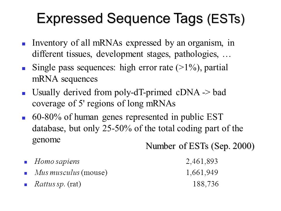 Expressed Sequence Tags (ESTs) Inventory of all mRNAs expressed by an organism, in different tissues, development stages, pathologies, … Single pass sequences: high error rate (>1%), partial mRNA sequences Usually derived from poly-dT-primed cDNA -> bad coverage of 5 regions of long mRNAs 60-80% of human genes represented in public EST database, but only 25-50% of the total coding part of the genome Homo sapiens 2,461,893 Mus musculus (mouse) 1,661,949 Rattus sp.