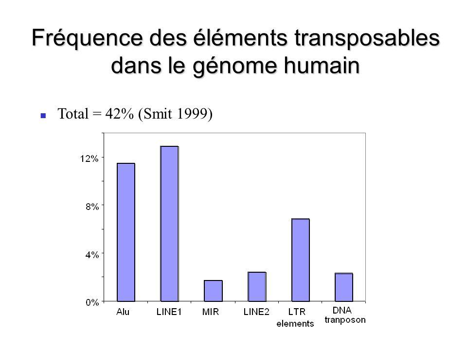 Retropseudogènes 23,000 à 33,000 retropseudogènes dans le génome humain (6-10 copies / Mb) Les gènes qui génèrent des retropseudogènes sont généralement de type housekeeping Gonçalves et al.