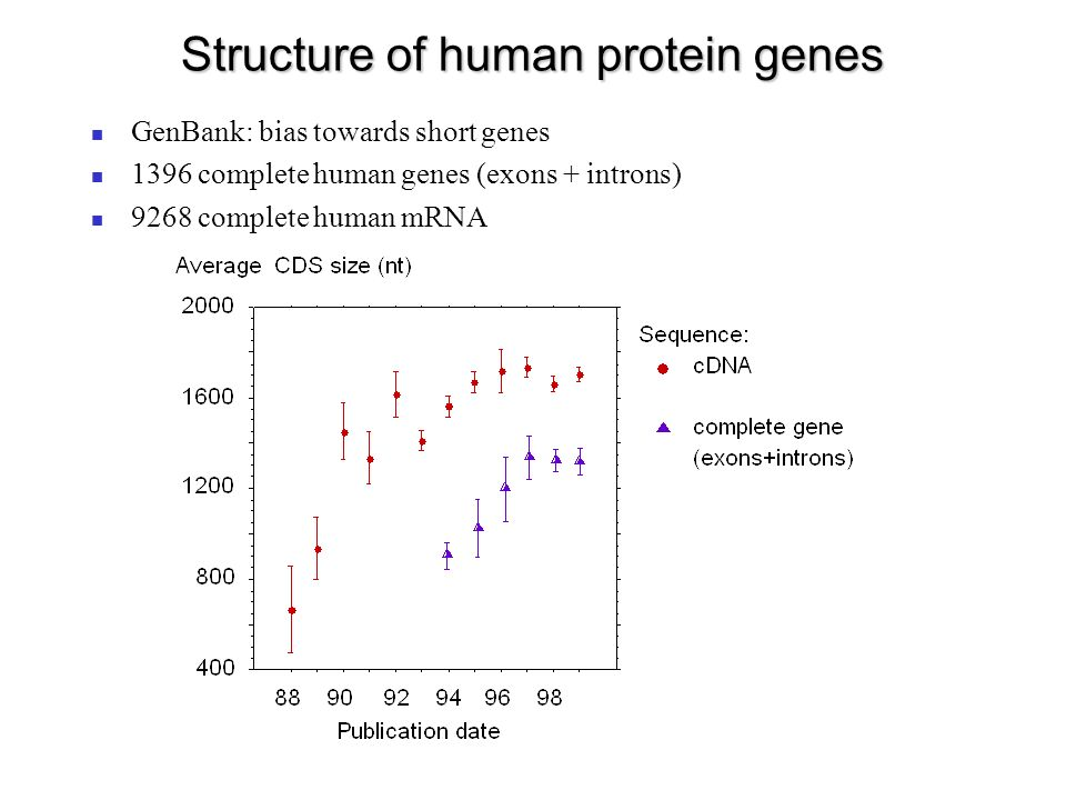 Isochore organization of the human genome Insertion of repeated sequences (A.