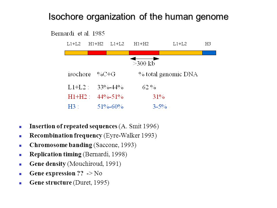 Isochores and insertion of repeat sequences 4419 human genomic sequences > 50 kb