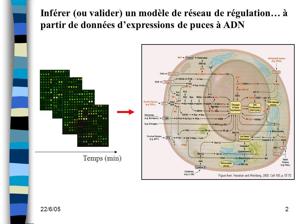 22/6/053 HYBRIDATION LECTURE DE LEMPREINTE DEPOT DES SONDES EXTRACTION DES DONNEES ET ANALYSE Extraction des ARNm Marquage des cibles A B D C Robot de dépôt Matériel biologique Cy5 Cy3 (1) (2) Choix des sondes Interprétation des résultats 85,685,6 13,113,1 1,31,3 Scanner Choix du plan de dépôt Introduction : la technique des puces à ADN