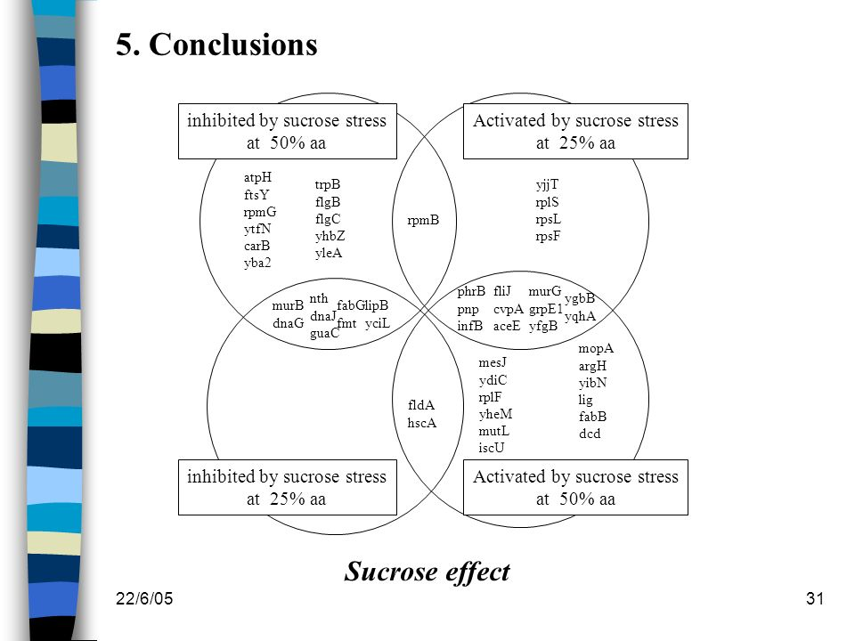 22/6/0531 5. Conclusions inhibited by sucrose stress at 50% aa inhibited by sucrose stress at 25% aa Activated by sucrose stress at 50% aa Activated b