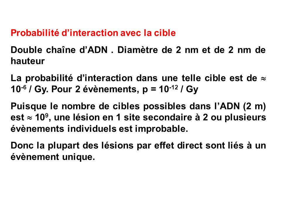 Probabilité dinteraction avec la cible Double chaîne dADN. Diamètre de 2 nm et de 2 nm de hauteur La probabilité dinteraction dans une telle cible est