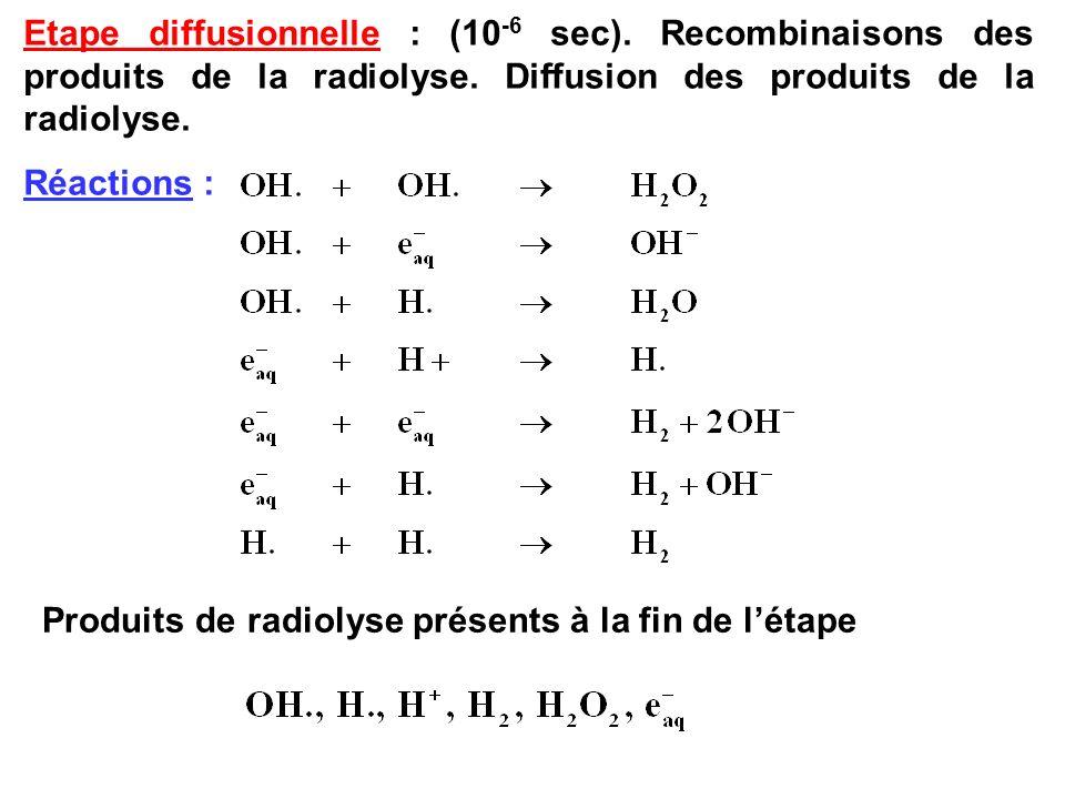 Etape diffusionnelle : (10 -6 sec). Recombinaisons des produits de la radiolyse. Diffusion des produits de la radiolyse. Réactions : Produits de radio