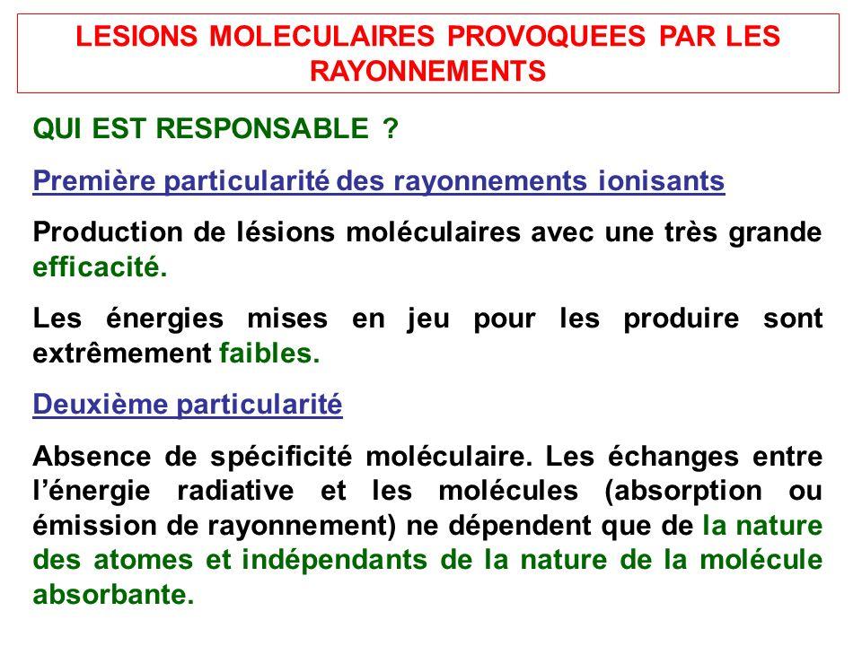 LESIONS MOLECULAIRES PROVOQUEES PAR LES RAYONNEMENTS QUI EST RESPONSABLE ? Première particularité des rayonnements ionisants Production de lésions mol