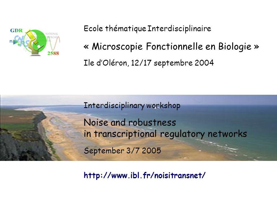 Ecole thématique Interdisciplinaire « Microscopie Fonctionnelle en Biologie » Ile dOléron, 12/17 septembre 2004 Noise and robustness in transcriptiona