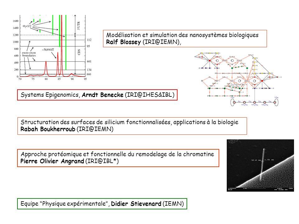 Structuration des surfaces de silicium fonctionnalisées, applications à la biologie Rabah Boukherroub (IRI@IEMN) Modélisation et simulation des nanosy