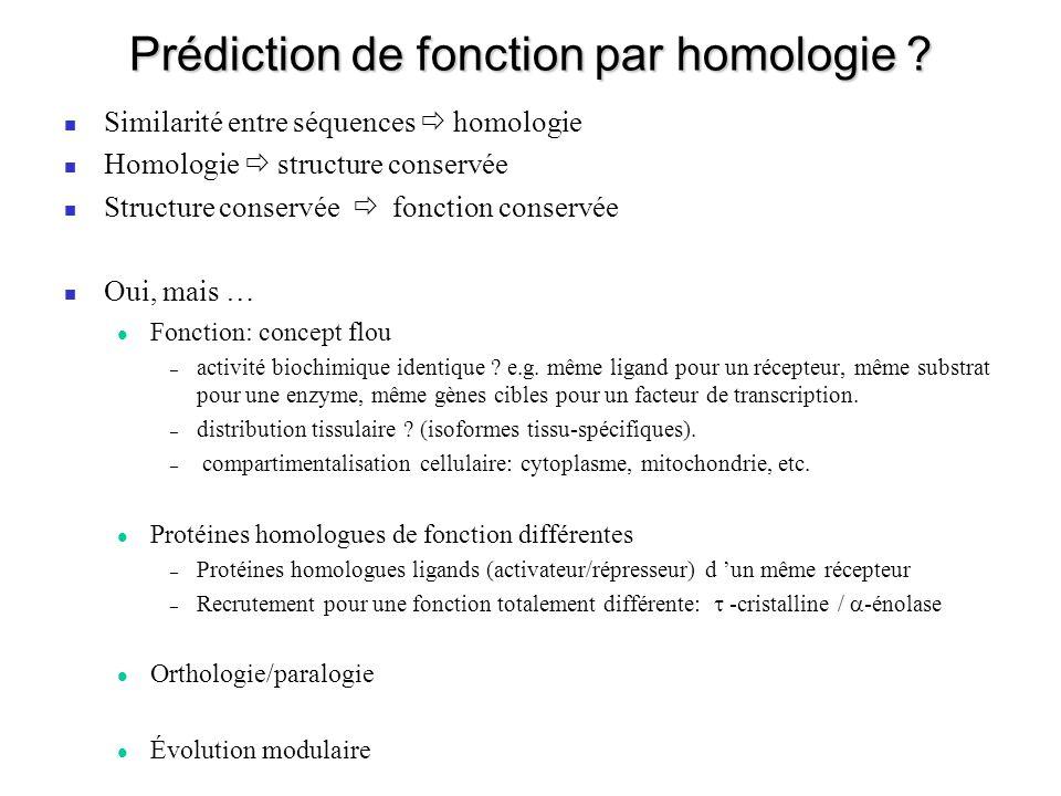 Prédiction de fonction par homologie .