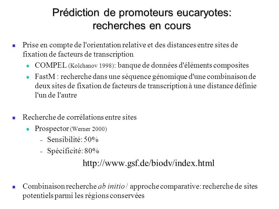 Prédiction de promoteurs eucaryotes: recherches en cours Prise en compte de l orientation relative et des distances entre sites de fixation de facteurs de transcription COMPEL (Kolchanov 1998) : banque de données d éléments composites FastM : recherche dans une séquence génomique d une combinaison de deux sites de fixation de facteurs de transcription à une distance définie l un de l autre Recherche de corrélations entre sites Prospector (Werner 2000) – Sensibilité: 50% – Spécificité: 80% http://www.gsf.de/biodv/index.html Combinaison recherche ab initio / approche comparative: recherche de sites potentiels parmi les régions conservées
