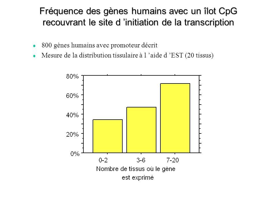 Fréquence des gènes humains avec un îlot CpG recouvrant le site d initiation de la transcription 800 gènes humains avec promoteur décrit Mesure de la distribution tissulaire à l aide d EST (20 tissus)