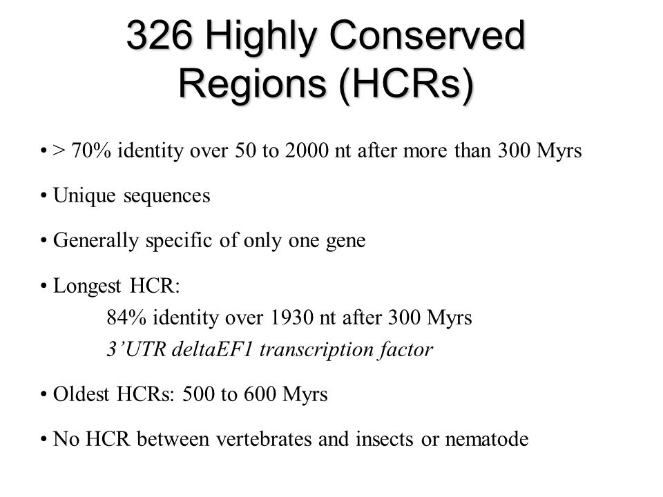 326 Highly Conserved Regions (HCRs) > 70% identity over 50 to 2000 nt after more than 300 Myrs Unique sequences Generally specific of only one gene Longest HCR: 84% identity over 1930 nt after 300 Myrs 3UTR deltaEF1 transcription factor Oldest HCRs: 500 to 600 Myrs No HCR between vertebrates and insects or nematode