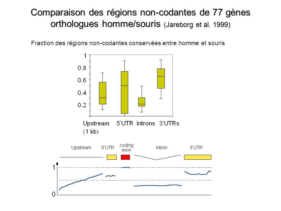 Comparaison des régions non-codantes de 77 gènes orthologues homme/souris (Jareborg et al.