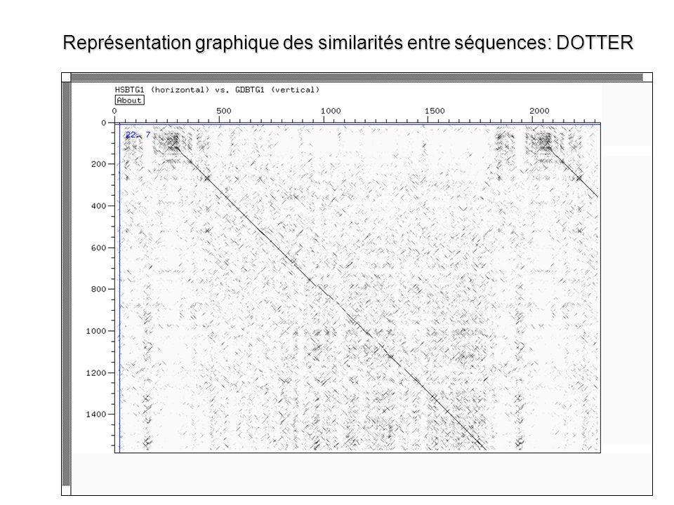 Représentation graphique des similarités entre séquences: DOTTER