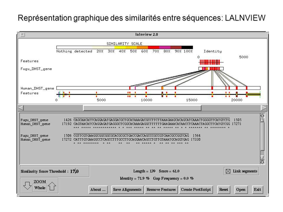 Représentation graphique des similarités entre séquences: LALNVIEW