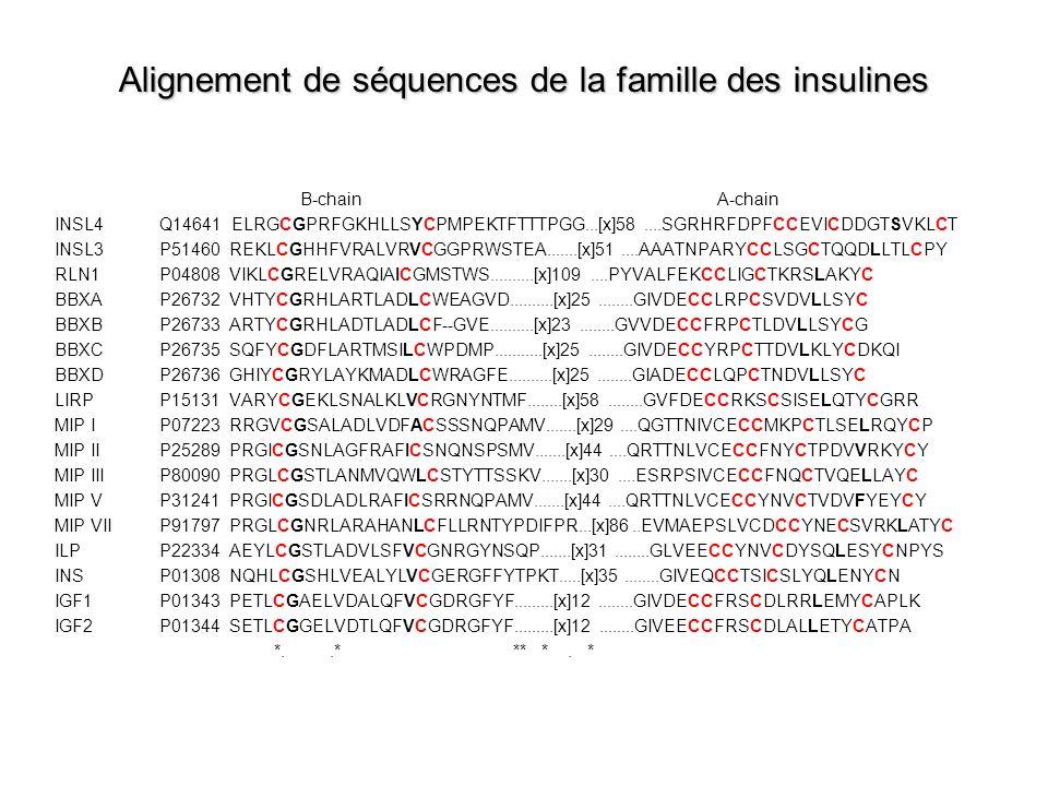 Alignement de séquences de la famille des insulines B-chain A-chain INSL4 Q14641 ELRGCGPRFGKHLLSYCPMPEKTFTTTPGG...[x]58....SGRHRFDPFCCEVICDDGTSVKLCT INSL3 P51460 REKLCGHHFVRALVRVCGGPRWSTEA.......[x]51....AAATNPARYCCLSGCTQQDLLTLCPY RLN1 P04808 VIKLCGRELVRAQIAICGMSTWS..........[x]109....PYVALFEKCCLIGCTKRSLAKYC BBXA P26732 VHTYCGRHLARTLADLCWEAGVD..........[x]25........GIVDECCLRPCSVDVLLSYC BBXB P26733 ARTYCGRHLADTLADLCF--GVE..........[x]23........GVVDECCFRPCTLDVLLSYCG BBXC P26735 SQFYCGDFLARTMSILCWPDMP...........[x]25........GIVDECCYRPCTTDVLKLYCDKQI BBXD P26736 GHIYCGRYLAYKMADLCWRAGFE..........[x]25........GIADECCLQPCTNDVLLSYC LIRP P15131 VARYCGEKLSNALKLVCRGNYNTMF........[x]58........GVFDECCRKSCSISELQTYCGRR MIP I P07223 RRGVCGSALADLVDFACSSSNQPAMV.......[x]29....QGTTNIVCECCMKPCTLSELRQYCP MIP II P25289 PRGICGSNLAGFRAFICSNQNSPSMV.......[x]44....QRTTNLVCECCFNYCTPDVVRKYCY MIP III P80090 PRGLCGSTLANMVQWLCSTYTTSSKV.......[x]30....ESRPSIVCECCFNQCTVQELLAYC MIP V P31241 PRGICGSDLADLRAFICSRRNQPAMV.......[x]44....QRTTNLVCECCYNVCTVDVFYEYCY MIP VII P91797 PRGLCGNRLARAHANLCFLLRNTYPDIFPR...[x]86..EVMAEPSLVCDCCYNECSVRKLATYC ILP P22334 AEYLCGSTLADVLSFVCGNRGYNSQP.......[x]31........GLVEECCYNVCDYSQLESYCNPYS INS P01308 NQHLCGSHLVEALYLVCGERGFFYTPKT.....[x]35........GIVEQCCTSICSLYQLENYCN IGF1 P01343 PETLCGAELVDALQFVCGDRGFYF.........[x]12........GIVDECCFRSCDLRRLEMYCAPLK IGF2 P01344 SETLCGGELVDTLQFVCGDRGFYF.........[x]12........GIVEECCFRSCDLALLETYCATPA *..* ** *.