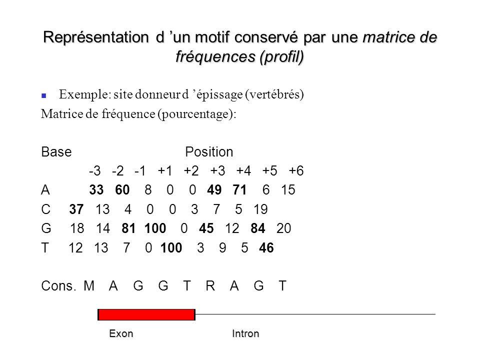 Représentation d un motif conservé par une matrice de fréquences (profil) Exemple: site donneur d épissage (vertébrés) Matrice de fréquence (pourcentage): BasePosition -3 -2 -1 +1 +2 +3 +4 +5 +6 A33 60 8 0 0 49 71 6 15 C 37 13 4 0 0 3 7 5 19 G 18 14 81 100 0 45 12 84 20 T 12 13 7 0 100 3 9 5 46 Cons.
