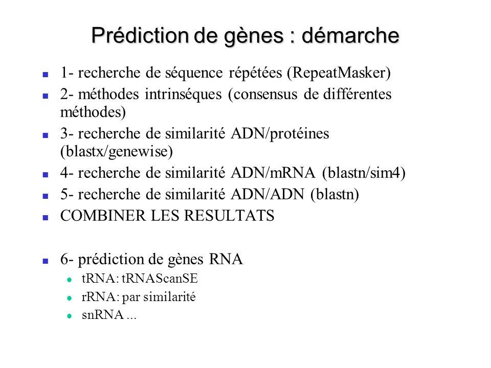 Prédiction de gènes : démarche 1- recherche de séquence répétées (RepeatMasker) 2- méthodes intrinséques (consensus de différentes méthodes) 3- recher
