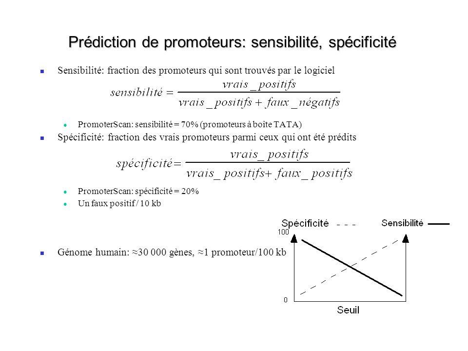 Prédiction de promoteurs: sensibilité, spécificité Sensibilité: fraction des promoteurs qui sont trouvés par le logiciel PromoterScan: sensibilité = 7