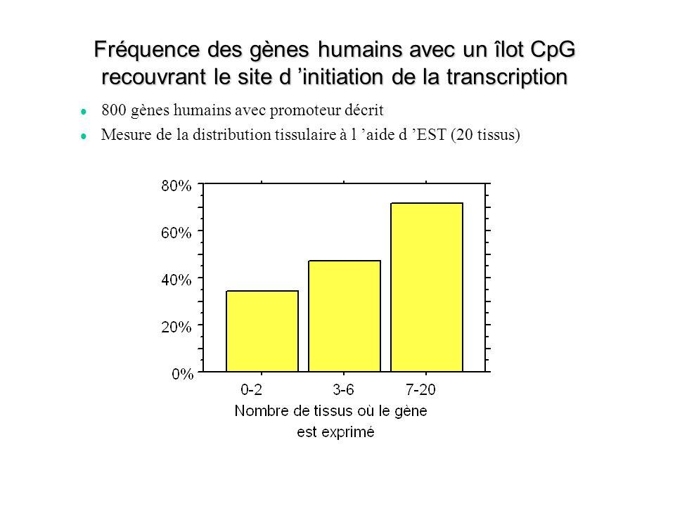 Fréquence des gènes humains avec un îlot CpG recouvrant le site d initiation de la transcription 800 gènes humains avec promoteur décrit Mesure de la