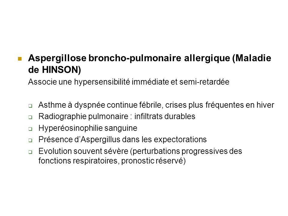 Aspergillose broncho-pulmonaire allergique (Maladie de HINSON) Associe une hypersensibilité immédiate et semi-retardée Asthme à dyspnée continue fébrile, crises plus fréquentes en hiver Radiographie pulmonaire : infiltrats durables Hyperéosinophilie sanguine Présence dAspergillus dans les expectorations Evolution souvent sévère (perturbations progressives des fonctions respiratoires, pronostic réservé)