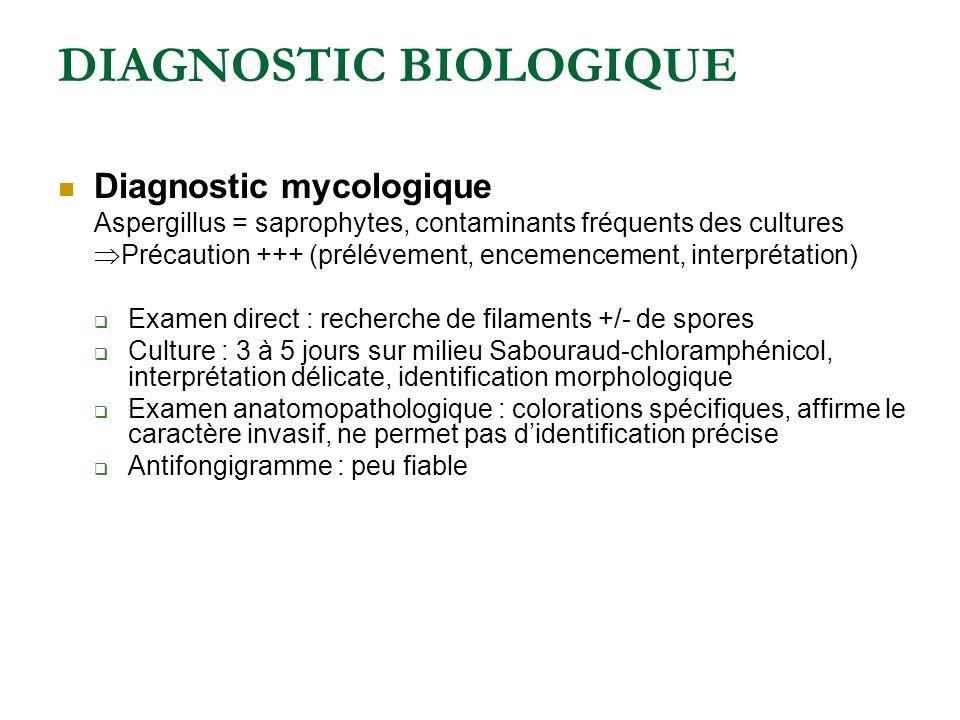 DIAGNOSTIC BIOLOGIQUE Diagnostic mycologique Aspergillus = saprophytes, contaminants fréquents des cultures Précaution +++ (prélévement, encemencement, interprétation) Examen direct : recherche de filaments +/- de spores Culture : 3 à 5 jours sur milieu Sabouraud-chloramphénicol, interprétation délicate, identification morphologique Examen anatomopathologique : colorations spécifiques, affirme le caractère invasif, ne permet pas didentification précise Antifongigramme : peu fiable