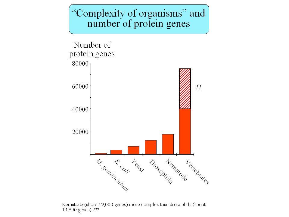 Prédiction de promoteurs: sensibilité, spécificité Sensibilité: fraction des promoteurs qui sont trouvés par le logiciel –PromoterScan: sensibilité = 70% (promoteurs à boîte TATA) Spécificité: fraction des vrais promoteurs parmi ceux qui ont été prédits –PromoterScan: spécificité = 20% –Un faux positif / 10 kb Génome humain: 100 000 gènes, 1 promoteur/30 kb