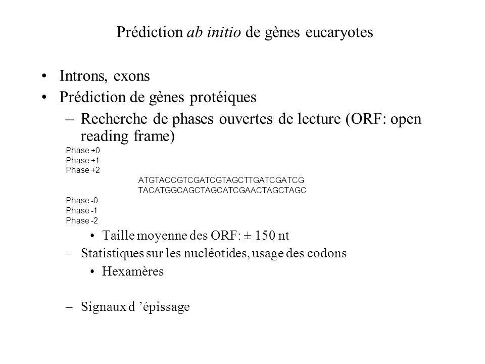Prédiction ab initio de gènes eucaryotes Introns, exons Prédiction de gènes protéiques –Recherche de phases ouvertes de lecture (ORF: open reading fra