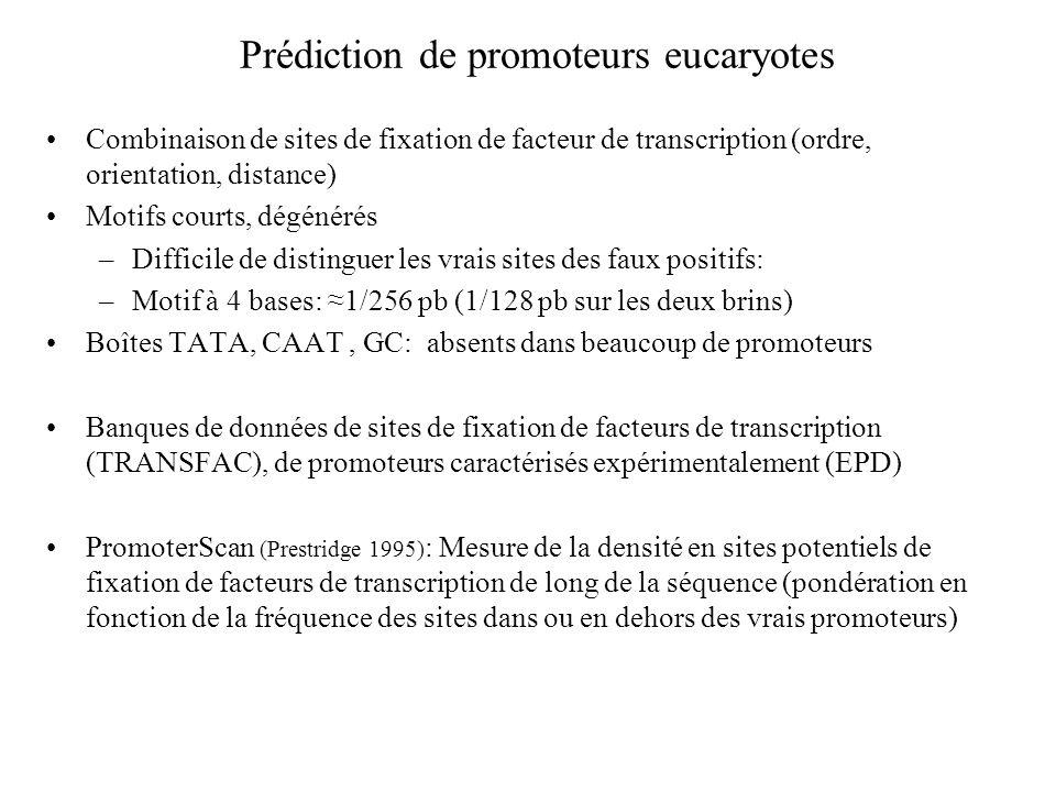 Prédiction de promoteurs eucaryotes Combinaison de sites de fixation de facteur de transcription (ordre, orientation, distance) Motifs courts, dégénér
