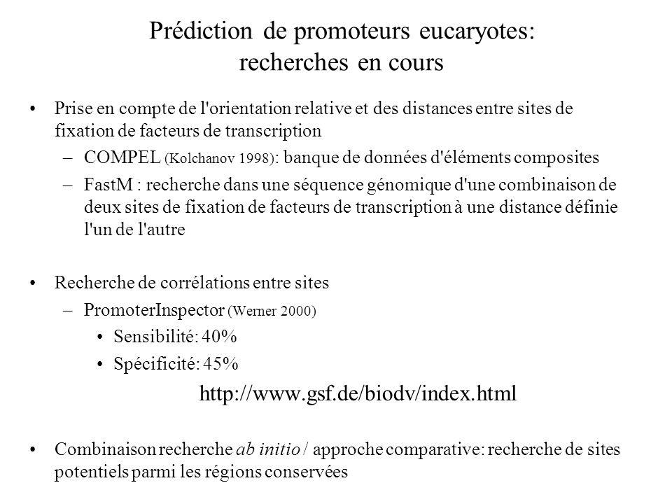 Prédiction de promoteurs eucaryotes: recherches en cours Prise en compte de l'orientation relative et des distances entre sites de fixation de facteur
