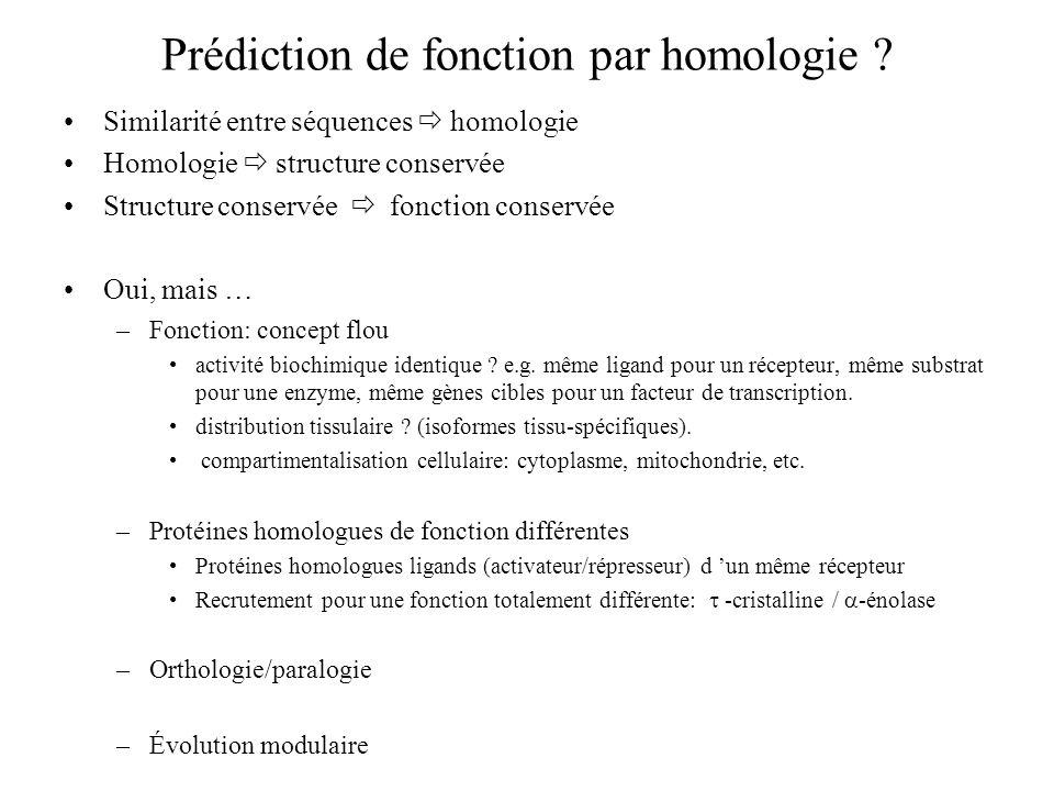 Prédiction de fonction par homologie ? Similarité entre séquences homologie Homologie structure conservée Structure conservée fonction conservée Oui,