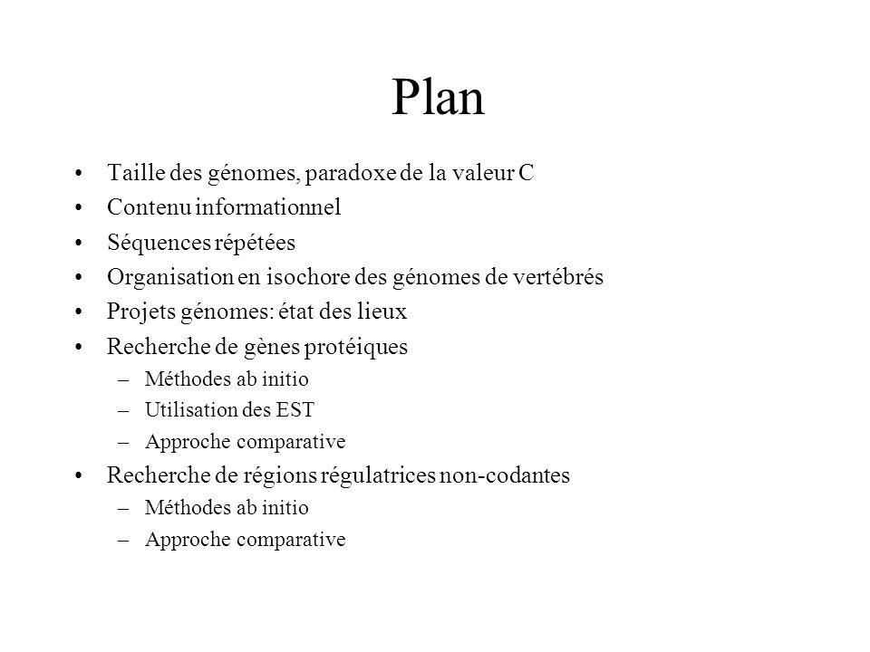 Plan Taille des génomes, paradoxe de la valeur C Contenu informationnel Séquences répétées Organisation en isochore des génomes de vertébrés Projets g
