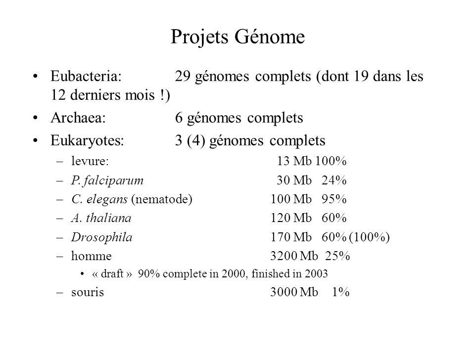 Projets Génome Eubacteria:29 génomes complets (dont 19 dans les 12 derniers mois !) Archaea:6 génomes complets Eukaryotes:3 (4) génomes complets –levu