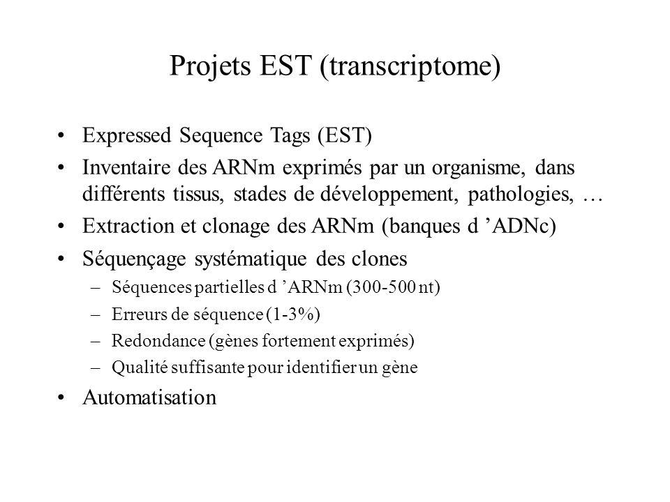 Projets EST (transcriptome) Expressed Sequence Tags (EST) Inventaire des ARNm exprimés par un organisme, dans différents tissus, stades de développeme